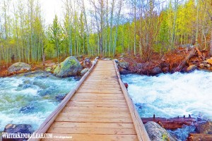 Taggart Creek Footbridge, Grand Teton National Park